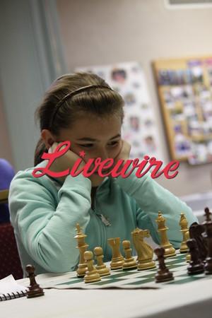 Chess Tournament 8025